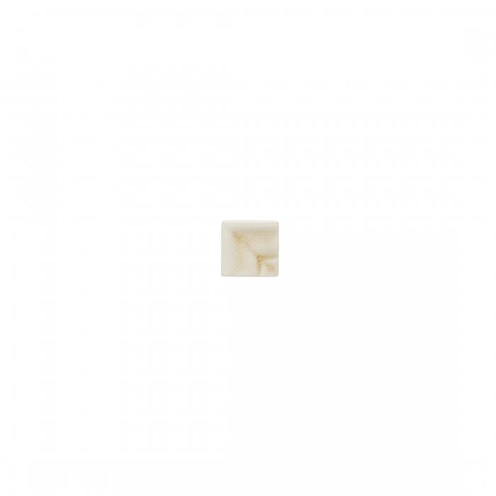 ADEX-ADOC5073-ANGULO-MARCOCORNISA-3 cm-15 cm-OCEAN>SAND DOLLAR